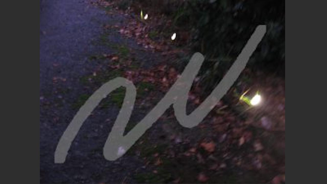 デザインの良い屋外ライトにセンサーをつけて人感センサーライトをDIY