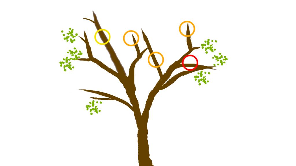 剪定する枝