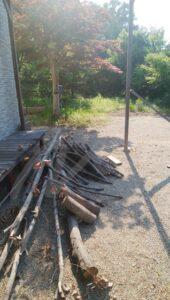剪定枝の乾燥